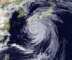 Typhoons are known for erratic steering currents and lack of turn signal use.