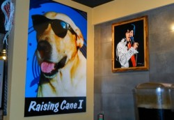 """No images of Raising Canes """"founder"""" are found in their Kuwait City location."""