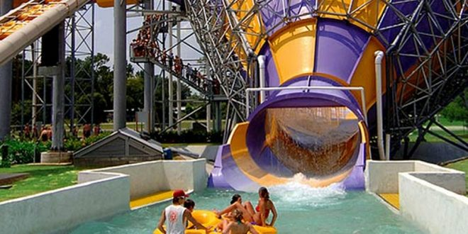 New Species of Bacteria Found at Blue Bayou Water Park